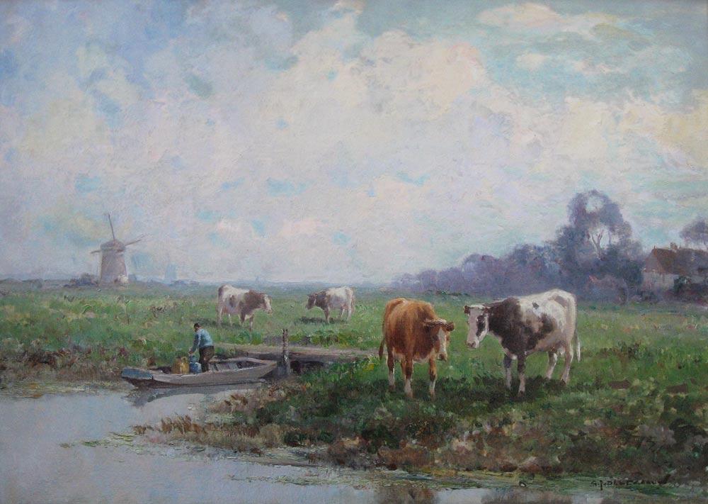 Poldergezicht met koeie